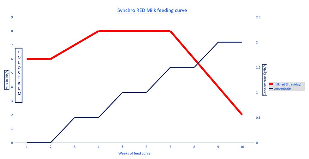 Britannia Synchro Red chart