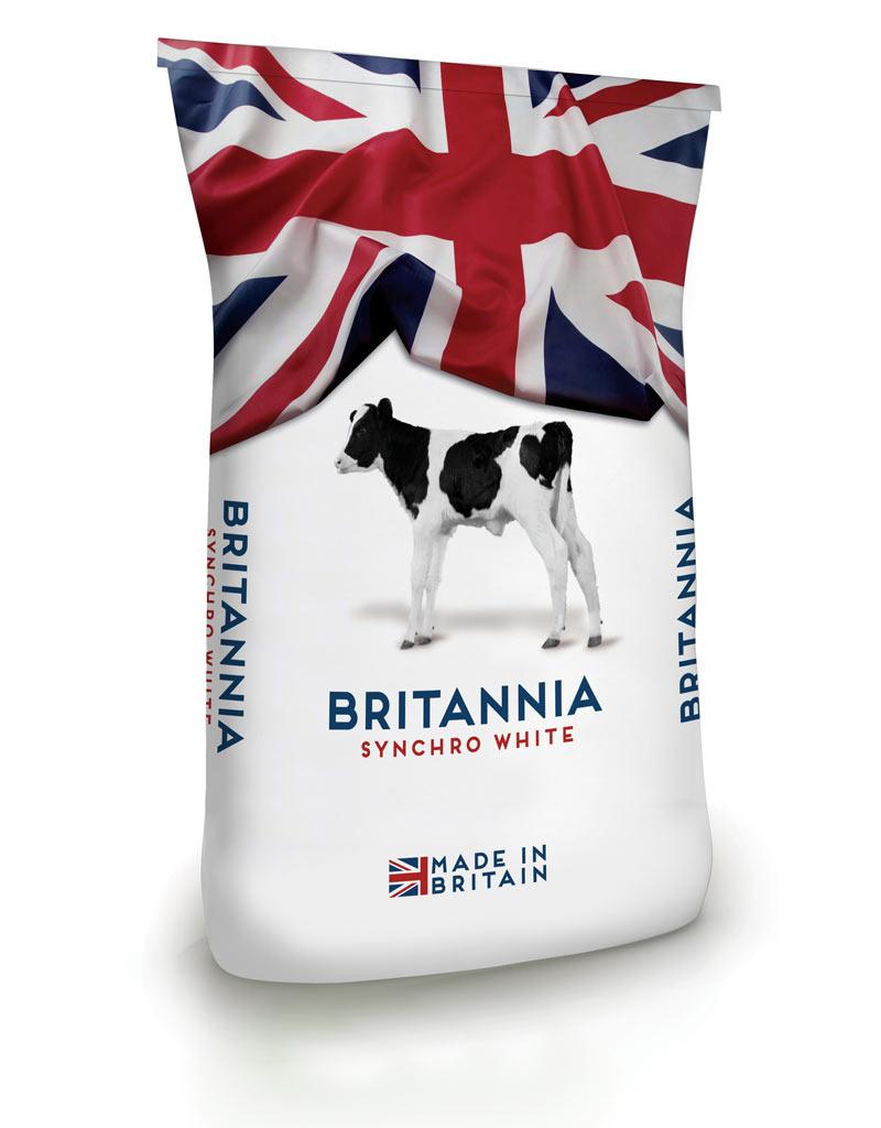 Britannia Synchro White bag