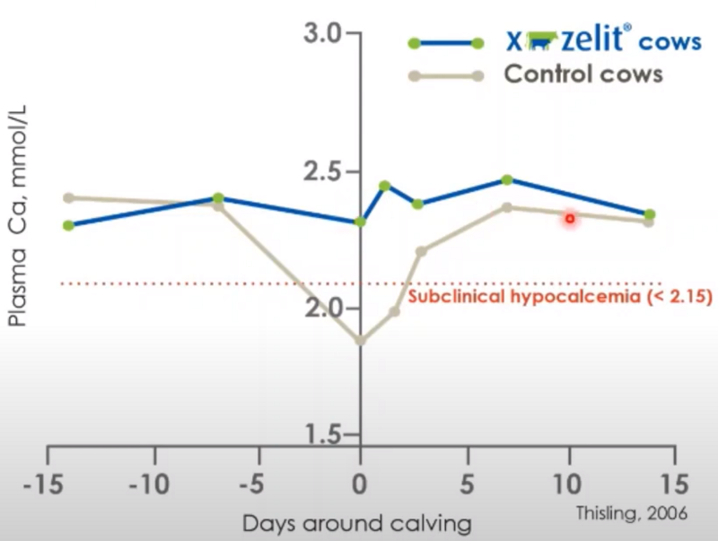 X-Zelit Blood Calcium Chart